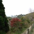 五台山の紅葉