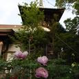 第十九番札所 立江寺