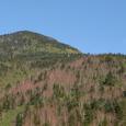 下山道からの岩管山