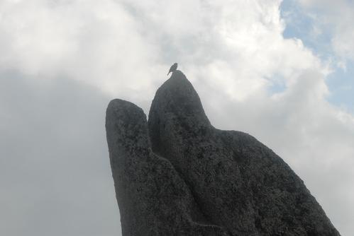 いるか岩アップ