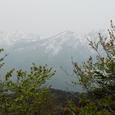 妙高山、火打山遠景