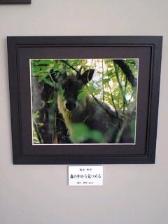 福井写真グランプリ展示