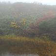 夢沼の紅葉