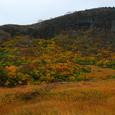 ゆげ山の紅葉