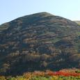 ダケカンバの稜線