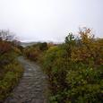 登山口遊歩道